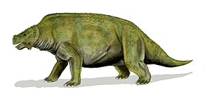 Scutosaurus - Restoration