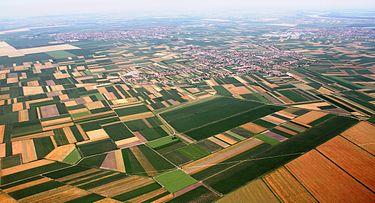 Сельское хозяйство сербии