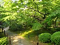 Shōren-in, Kyoto - IMG 5040.JPG