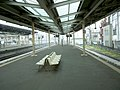 ShintokorozawaStation-platforms-historicalphoto-march2004.jpg