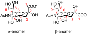 Sialic acid - Neuraminic acid anomeric configuration