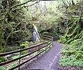 Sloughan Glen - geograph.org.uk - 411407.jpg
