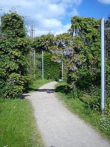 Botanisk Have Aarhus Wikipedia Den Frie Encyklopædi