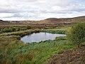 Small lochan near Auchnagallin - geograph.org.uk - 1462706.jpg