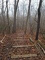 Smith Nature Park and Slyh Run (32172525584).jpg