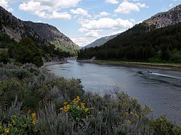 Snake River at Alpine, Wyoming.jpg