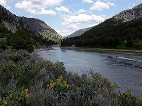 Snake River Alpine, Wyoming.jpg