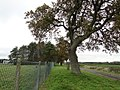 South-eastern boundary fence at RAF Marham.jpg
