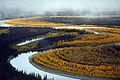 South Fork of Koyukuk River.jpg