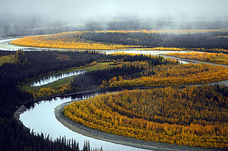South Fork des Koyukuk im Kanuti National Wildlife Refuge