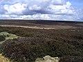 Spaunton Moor - geograph.org.uk - 171978.jpg