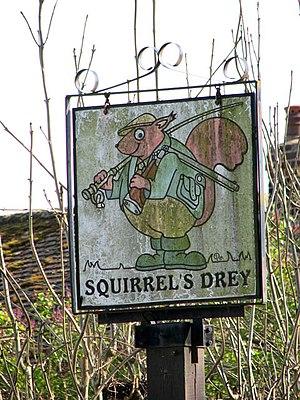 "Drey - Sign for the redundantly named ""Squirrel's Drey"" pub in Sporle, King's Lynn, Norfolk, UK"