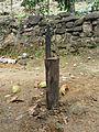 Sri Lanka-Coconut husking tool.jpg