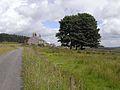 St Oswald's Way approaching Fallowlees - geograph.org.uk - 1411568.jpg
