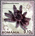 Stamps of Romania, 2010-12.jpg