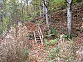 Steps near Long Close Farm - geograph.org.uk - 608320.jpg