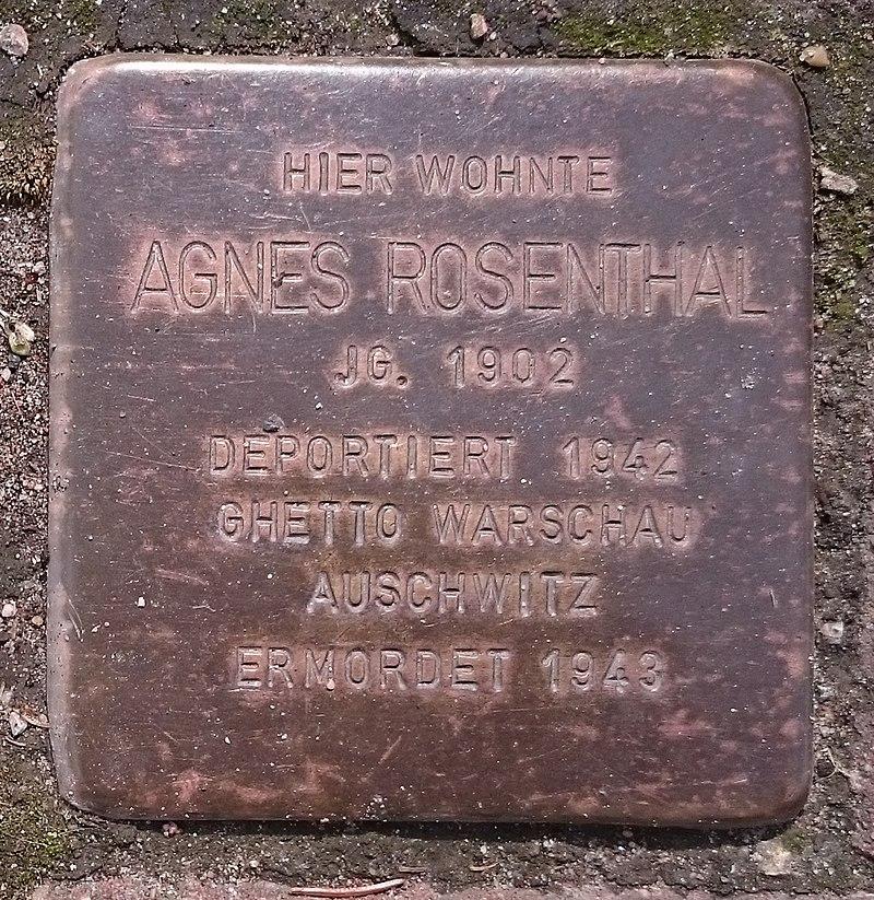 Stolperstein Agnes Rosenthal (Freden)