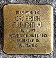 Stolperstein Berliner Allee 81 (Weißs) Erich Blumenthal.jpg