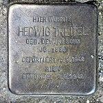 Stolperstein Richard-Sorge-Str 34 (Frhai) Hedwig Treitel.jpg