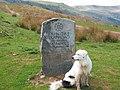 Stone sign marking Bryn Oer Tramroad - geograph.org.uk - 83603.jpg
