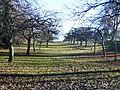 Streuobstwiese bei Aidlingen im Herbst - panoramio.jpg