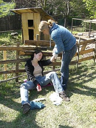First aid - First aid scenario training in progress