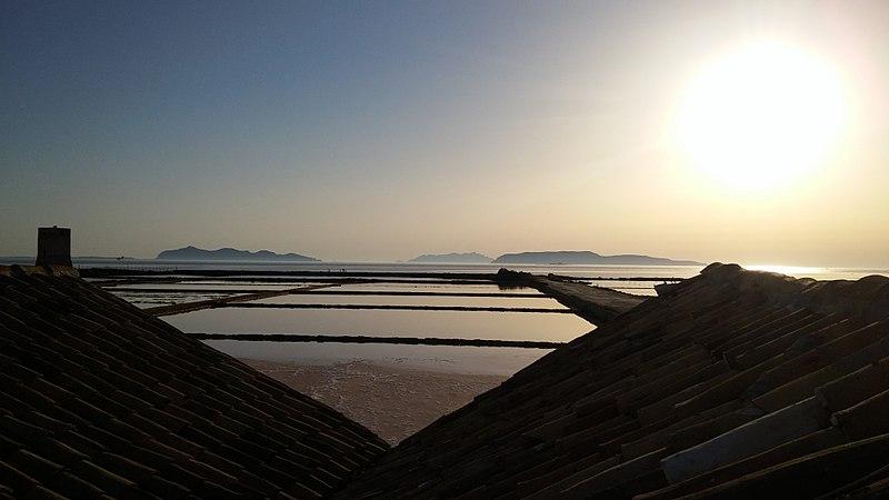 Sul tetto della salina.jpg