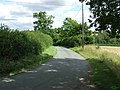 Sunny country road - geograph.org.uk - 925898.jpg