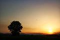 Sunset in Rahovec.jpg