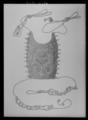 Svanskappa sadel nr 9, franska gåvan - Livrustkammaren - 36187.tif
