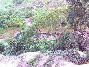 Thiruvananthapuram–Shoranur canal - T S canal
