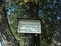 Tafel am Baum-abf-.JPG
