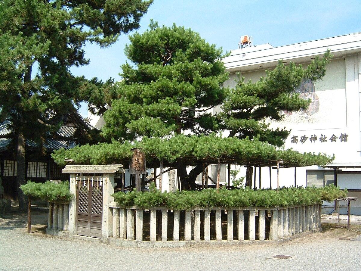 相生の松 - Wikipedia
