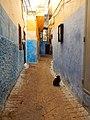 Tangier, Morocco (25364725534).jpg