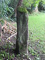 Tavistock stone TVST3-1 side.JPG