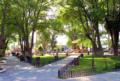 Tecate-parque.png