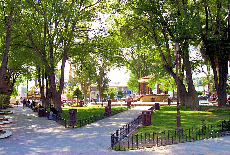 Tecate-parque