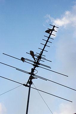 255px Television Antenna - آموزش درست کردن فرستنده ۲۰ کیلومتری حتی برای مبتدیان