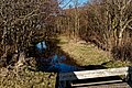 Texel - De Dennen - Nature Path 'Alloo' - View NE II.jpg