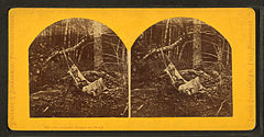 The (AB) original babe in the wood, by Zimmerman, Charles A., 1844-1909.jpg