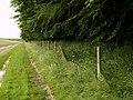The Huggate to Wetwang Footpath - geograph.org.uk - 484797.jpg