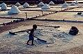 The Jingzaijiao Tile-paved Salt Fields ( WEI, WAN-CHEN ) 1.jpg