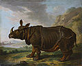 The Leiden Rhinoceros, by Johann Dietrich Findorff.jpg