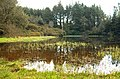 The Mountain Lough, Castlewellan Forest Park - geograph.org.uk - 1247321.jpg