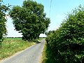 The Road to Holmes House - geograph.org.uk - 196695.jpg