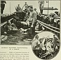 The Times history of the war (1914) (14577835930).jpg