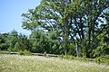 The Yard property from US 220.jpg
