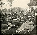 The photographic history of the Civil War - thousands of scenes photographed 1861-65, with text by many special authorities (1911) (14759721801).jpg