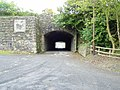 The tunnel at Hoy's Meadow - geograph.org.uk - 787442.jpg