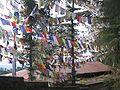 Tibetaj preĝflagoj.jpg